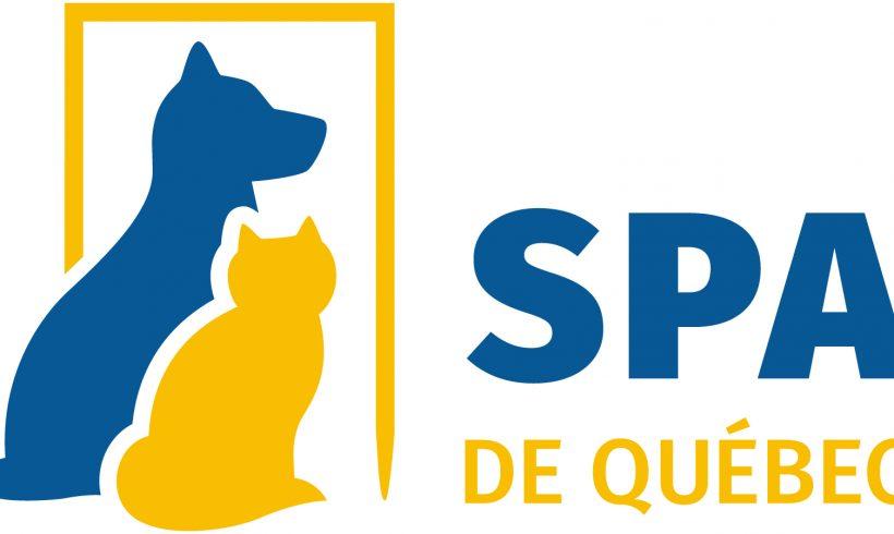 Plusieurs refuges de la région s'allient pour améliorer le traitement des animaux domestiques